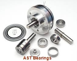 AST GE50ES-2RS plain bearings