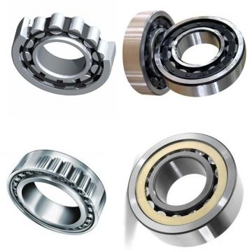 NTN NSK NACHI Stainless Steel Deep Groove Ball Bearing for Merry Go Round/Fishing Reel Ball Bearing 6206 6301 6204 6904