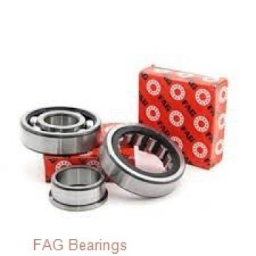 FAG 3005-B-2Z-TVH angular contact ball bearings