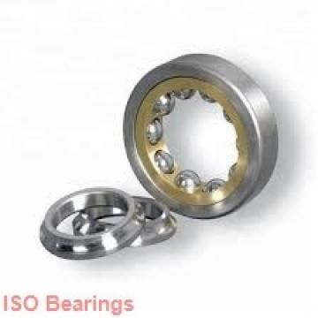 ISO NUP204 cylindrical roller bearings