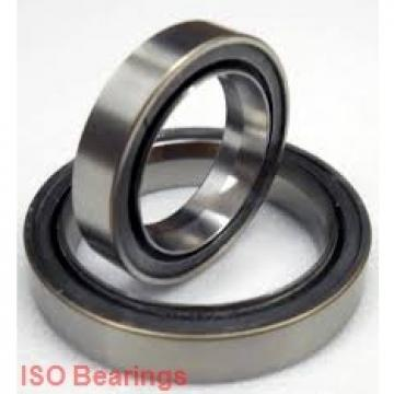 ISO 619/4-2RS deep groove ball bearings